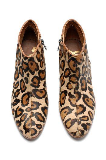 sam edelman petty boot in leopard.