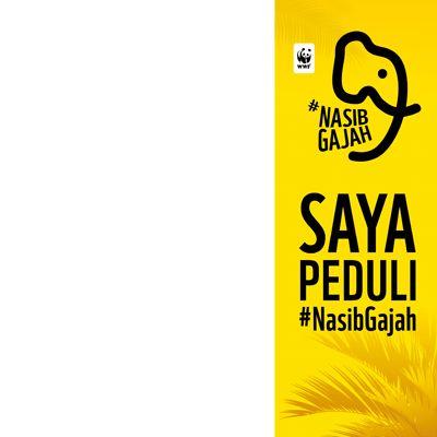 #NasibGajah - Support Campaign | Twibbon