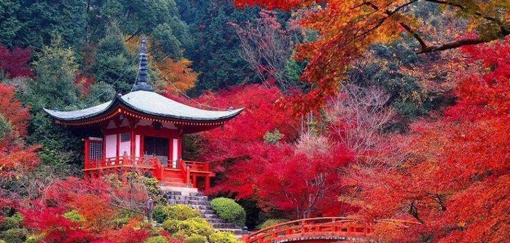 Daigo-ji, à Kyoto, Japon Un temple bouddhiste classé au patrimoine mondial de l'humanité de l'Unesco