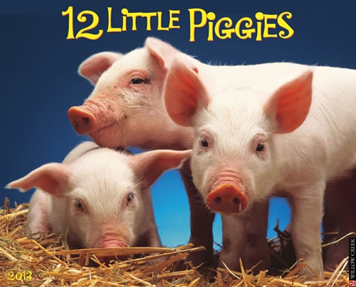 Buy 12 Little Piggies 2013 Calendar online at Megacalendars This bright and cheerful calendar features a full year of charming full color photographs of these chubby barnyard darlings!   http://www.megacalendars.com/12-Little-Piggies-2013-Calendar-54912_p_13078.html
