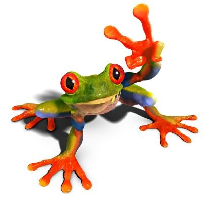 Frog by David Penfound