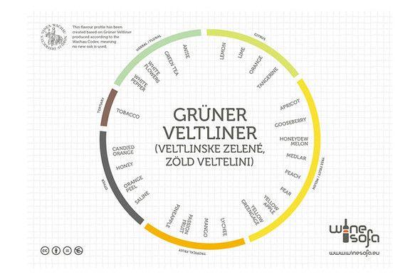 Grüner Veltliner flavor profile - Grüner Veltliner is the most important autochthonous grape variety in Austria.