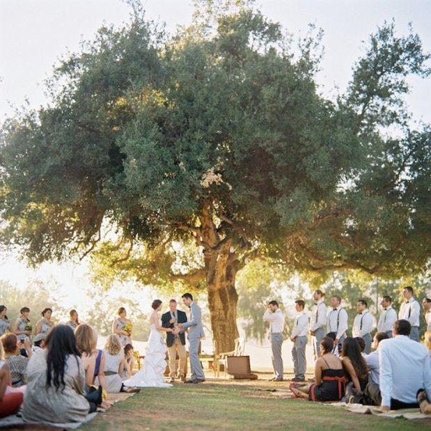 Ceremony Under A Tree: Best 25+ Picnic Weddings Ideas On Pinterest
