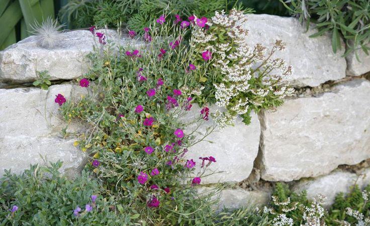 Naturstein ist vielseitig, robust und zeitlos schön – hinter Bezeichnungen wie Sandstein, Granit, Basalt und Porphyr verbergen sich wahre Gartenschätze. Das hochwertige Baumaterial bietet viele Möglichkeiten, den eigenen Garten individuell und geschmackvoll zu gestalten.