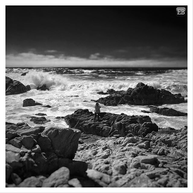 """""""Crash Into Me"""" - Pacific Grove, California #TheDailyMobile . . . . . . . . . . #travel, #California, #Cali, #CentralCoast, #PacificGrove, #Swept, #windswept, #trees, #water, #ocean, #waves, #coast, #wind, #PacificOcean, #Pacific, #blackandwhite, #bluesky #CrashIntoMe, #crash, #spray, #saltspray, #lonefigure, #photographer, #ontheedge #montereylocals #pacificgrovelocals- posted by Eric Brazier https://www.instagram.com/eric_brazier. See more of Pacific Grove, CA at…"""