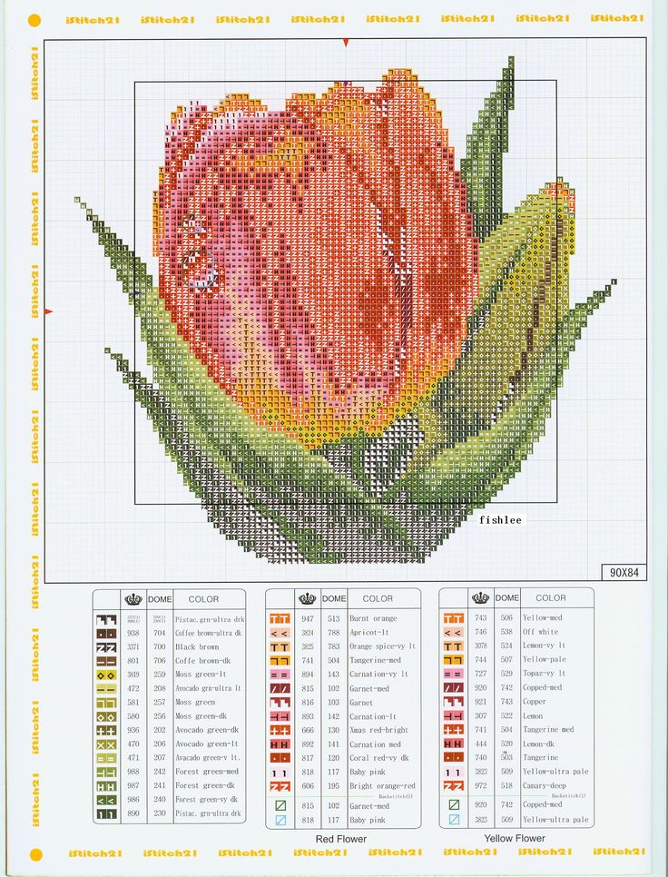 Cross Stitch *♥* Tulipe