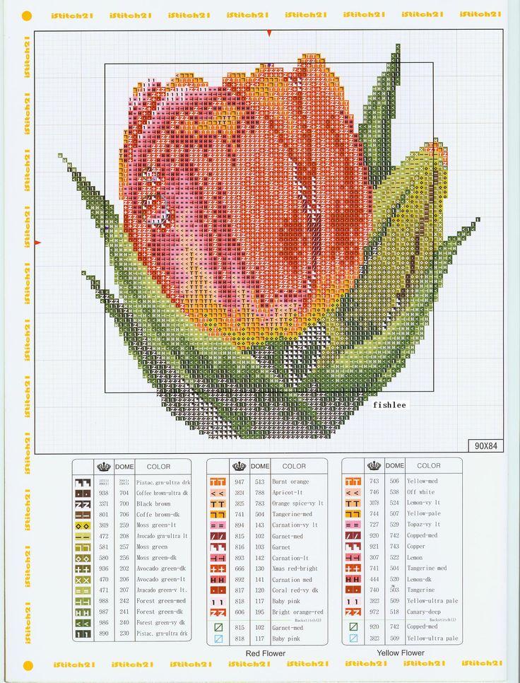 Cross Stitch *♥* Tulipe