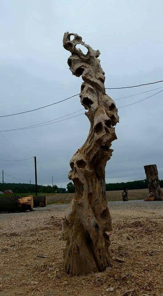 Driftwood skulls                                                                                                                                                     More