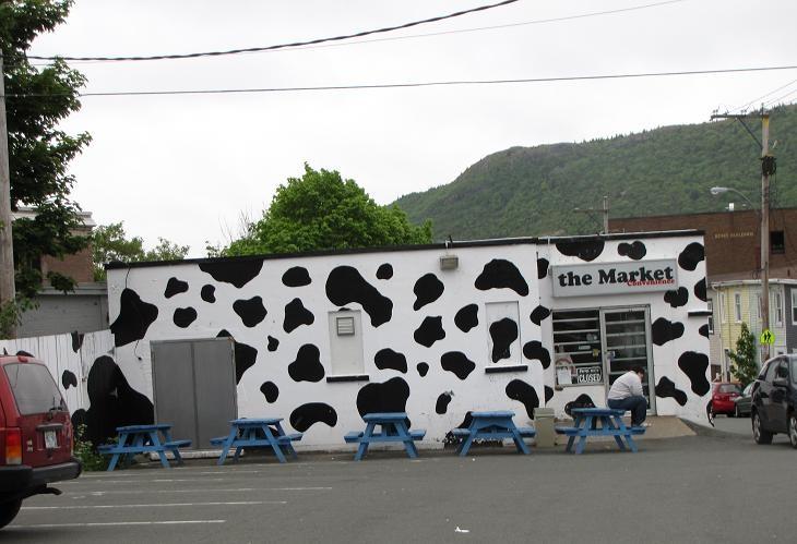 Moo Moos; St John's Newfoundland. Best Ice Cream ever