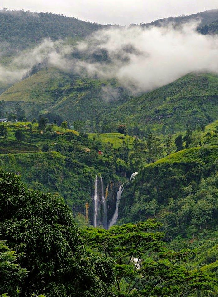 "Nuwara Eliya is a city, in the hill country of the Central Province, Sri Lanka. The city name meaning is ""city on the plain"" or ""city of light""."