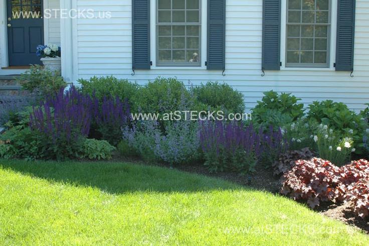 Landscaping: Landscape 04, Photo Portfolio, Purple Flowers, Shrub, Landscape Ideas