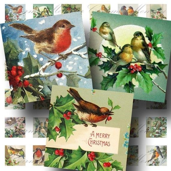 INSTANT Download  Vintage Christmas Birds by CharmedMemoryCollage