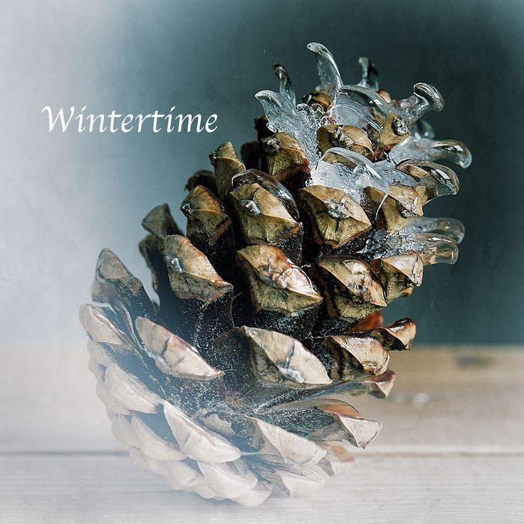 """Wintertime"" fotograaf: H.Stilting"
