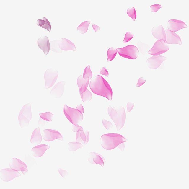 Floating Sakura Petals Illustration Pink Decoration Png Transparent Clipart Image And Psd File For Free Download In 2020 Rose Petals Falling Pink Flowers Background White Flower Background
