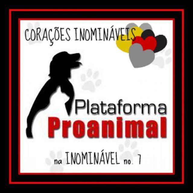Nos Corações Inomináveis deste número falamos sobre a Plataforma Proanimal, uma associação que actua na área de Vila Real. Saibam mais na #revistainominavel no. 7  https://www.joomag.com/magazine/inominável-ano-2-inominável-nº7/0315087001486647919  #revistadigital #revistaonline #revista #revistaportuguesa #portuguesemagazine #portugal #animais #apoioaosanimais #plataformaproanimal #bookstagram #instadaily [link in bio]