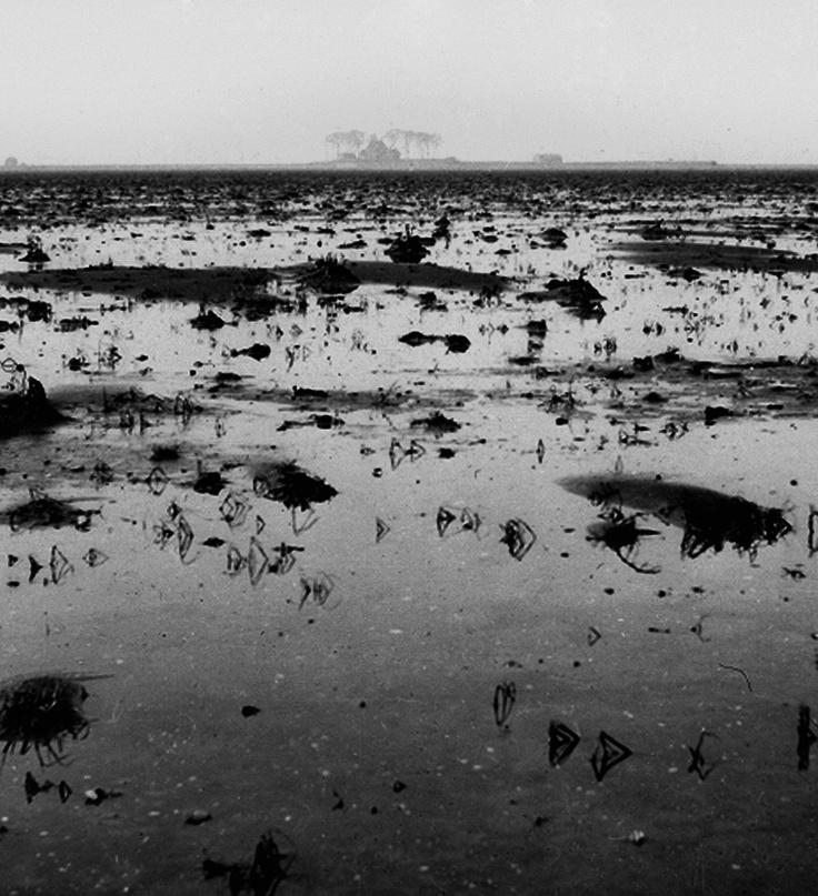 De drooggevallen Noordoostpolder. Op de achtergrond Schokland, 1941.  Fotocollectie Nieuw Land, Directie Wieringermeer.