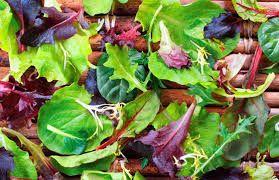 Темно-зеленый цвет указывает на большее содержание витаминов и ценных для организма фитохимических веществ. К примеру, зеленый пигмент хлорофилл содействует выведению токсинов и шлаков, очищая печень и иные органы.Листовые овощи темно-зеленого цвета являются источником:витамина С;каротиноидов;магния;фолиевой кислоты;железа;калия;пищевых волокон;жирных кислот омега-3.Следует съедать каждый день как минимум 3 порции указанных овощей.