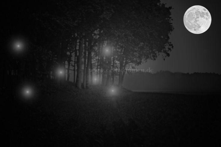 Um die Irrlichter des Waldes ranken viele Sagen und Legenden. Sie boten dem Aberglauben des Mittelalters beste Voraussetzungen für unheimliche Geschichten. Weit verbreitet war der Glaube, das es bö…