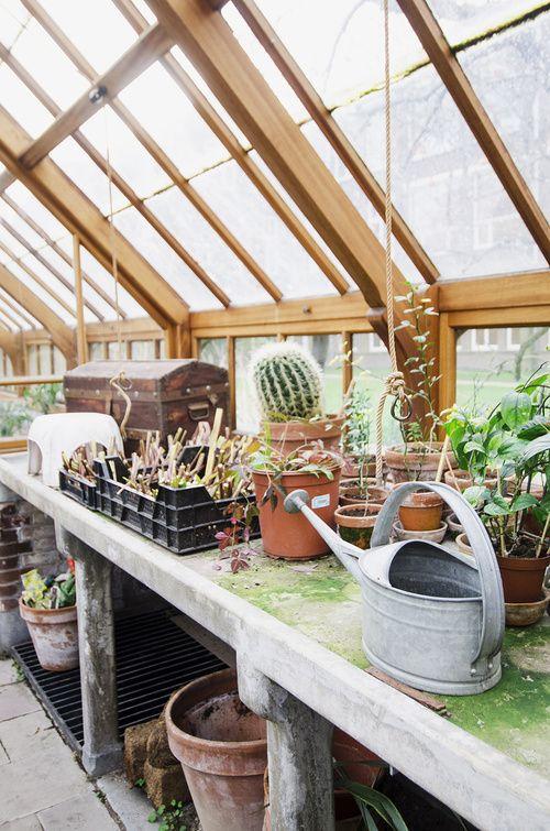 Greenhouse in Utrecht
