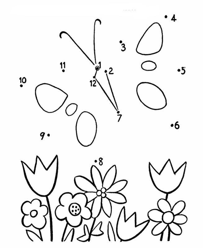 Papillon et fleurs diverses