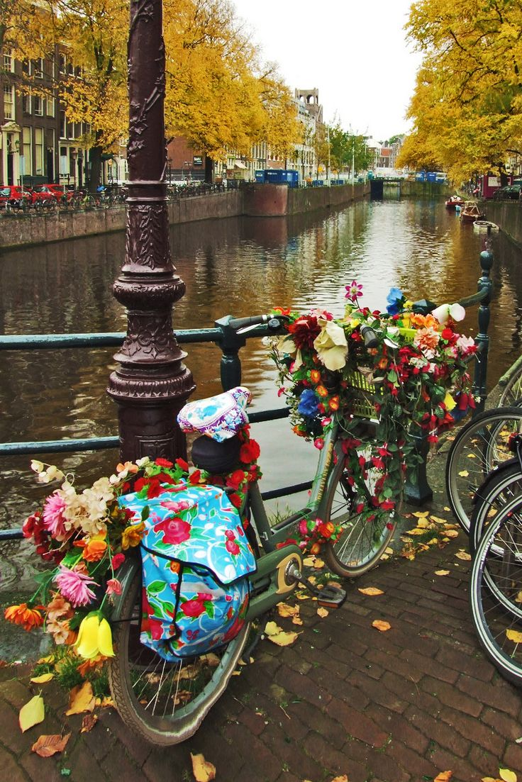 A sight not to be missed- the bicycles of Amsterdam, Holland. #travelingTOMS