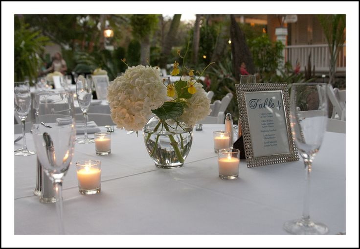 Best images about love in bloom centerpiece creations
