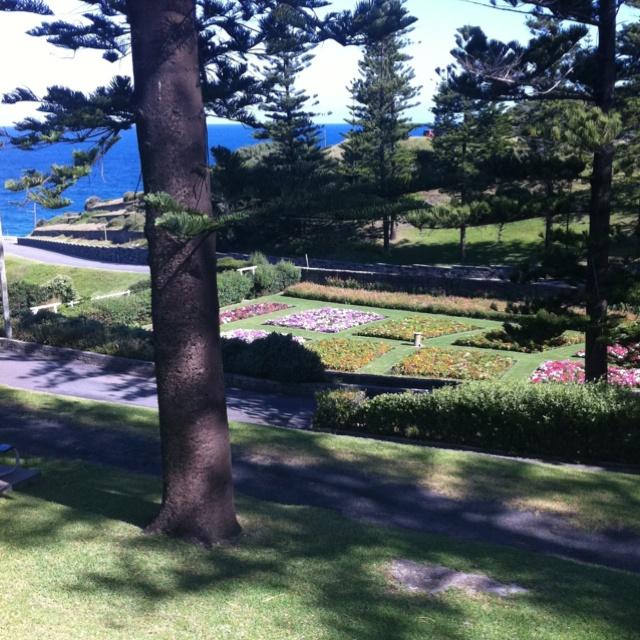 King Edward Park Newcastle NSW