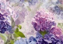 Poszterek, falmatricák: virágmintás - oldal 3/4 - FüggönyFutár Webáruház