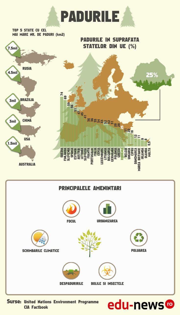 Pădurile reprezintă un domeniu important pentru Uniunea Europeană. Suprafaţa acestora acoperă 37,8 % din teritoriul european şi asigură existenţa a 3,4 milioane de persoane.