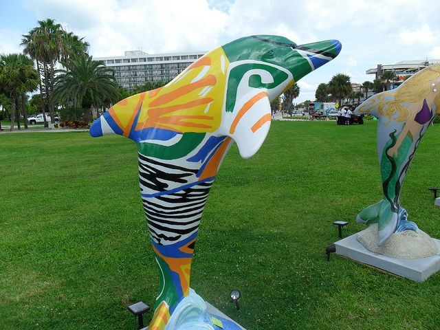 42 Best Images About Clearwatersdolphins On Clearwater Beach Fl On Pinterest Gardens