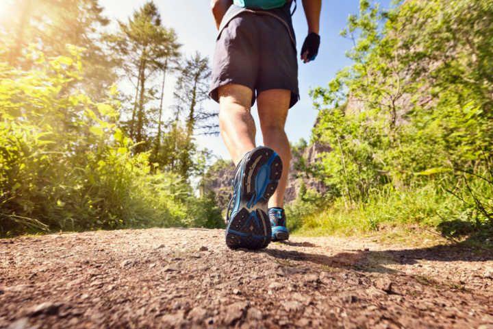 Projeto Caminhadas de Verão, da Estação Ecológica da UFMG, segue até 3 de fevereiro.