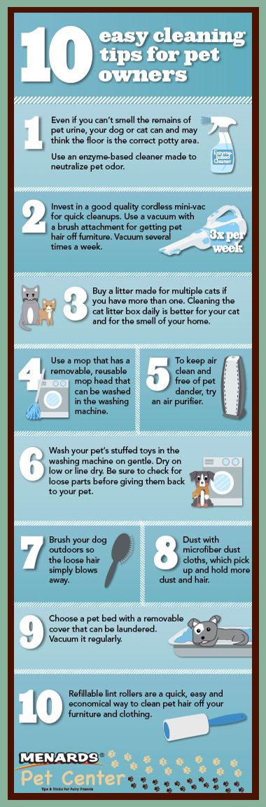10 Easy Tips For Cleaning Up After Your Pet brought to you by the Menards Pet Center http://www.menards.com/main/c-19356.htm