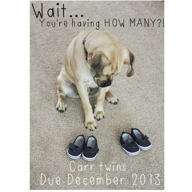 Our twin pregnancy announcement                                                                                                                                                                                 More
