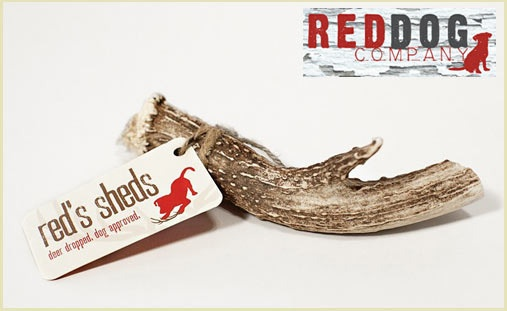 Save 53% on a naturally shed dog antler chew! The antlers won't chip, splinter, stain or stink and they are naturally shed and collected in the USA with no hormones, antibiotics or animal by-products.