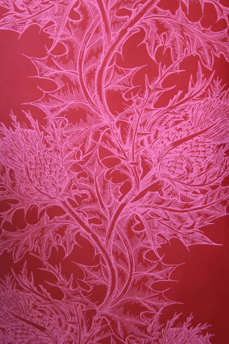 Pink Thistle wallpaper from Timorous Beasties