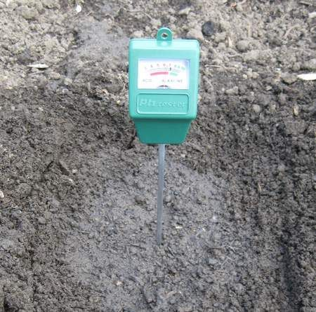A Soil pH Meter Is Inexpensive, Effective And Easy To Use