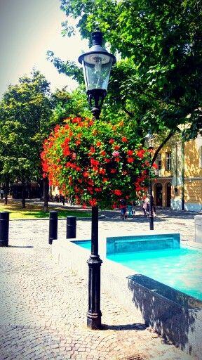 #Bratislava
