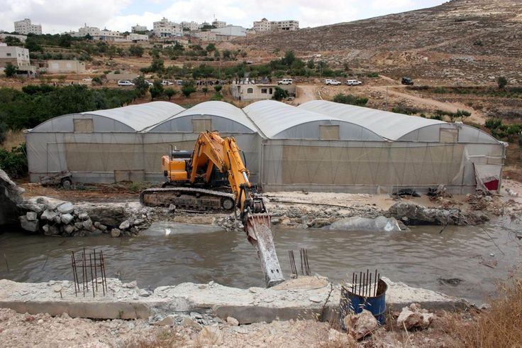 """Professor argues that Israel is """"notorious"""" for stealing water from Palestinians."""