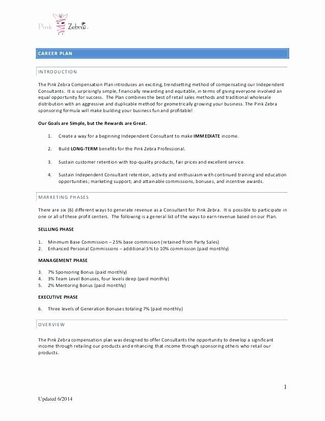 Professional Compensation Plan Template Unique Best Professional Pensation Plan Template Ince In 2021 Business Budget Template Free Word Document Excel Budget Template