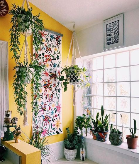 Lots of plants and yellow wall, nice vintage vibe hippie home and big window.