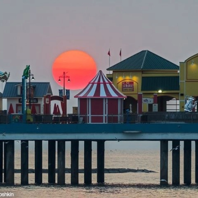 Beach House Rental Crystal Beach: 96 Best Images About Images Of Galveston Island On
