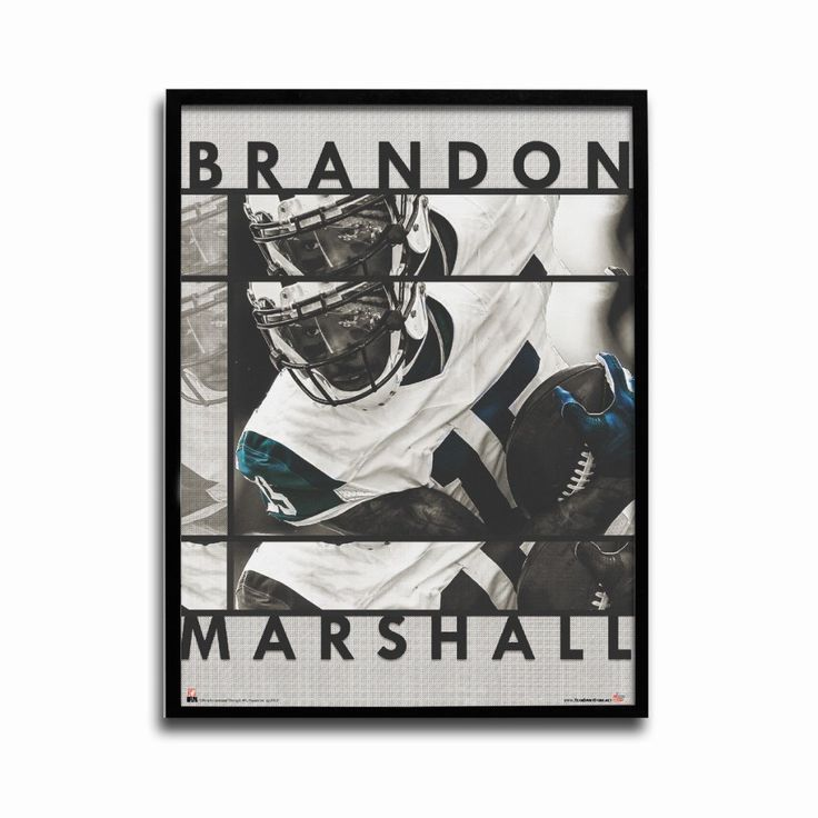 New york jets brandon marshall jet city 24x18 football poster