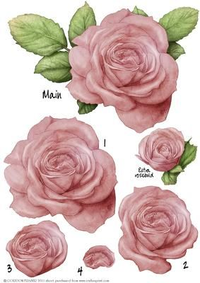 A beautiful large rose, (will roughly fit in 6x6 square) decoupage sheet. All…