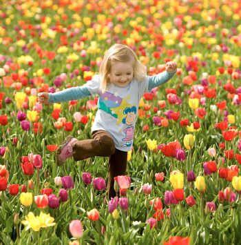 O Sol ingressa em Libra: Bem-vinda Primavera!