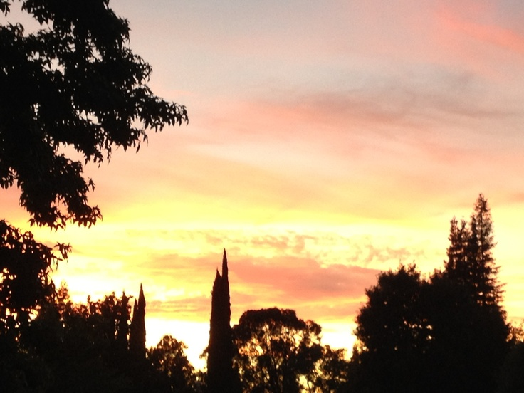 Evening blended sky