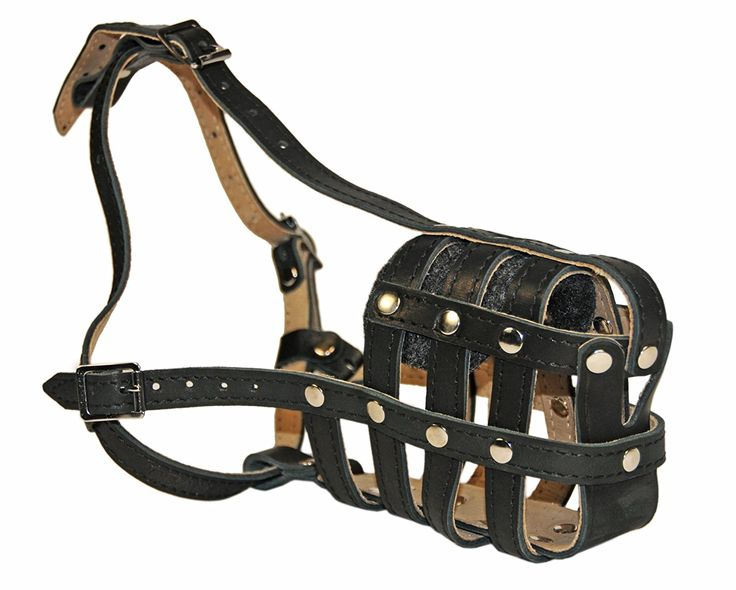 Dean and Tyler Royal Basket Leather Muzzle, Large Doberman ** Quickly view this special dog product, click the image : Dog muzzle