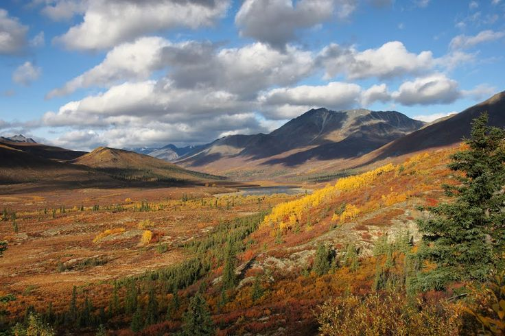 Tombstone Territorial Park - Dempster Hwy - 1, Yukon YT, Canada