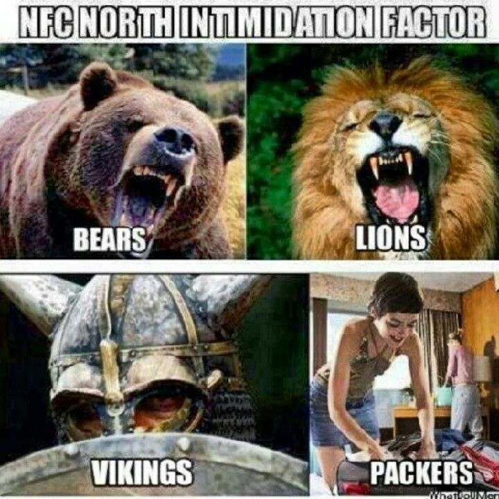 Bears, Lions, Vikings and. Packers. Oh my? The NFC North Division is known as the Black 'n Blue Division, but not because they can fold clothes good. #Football #NFL [photo]