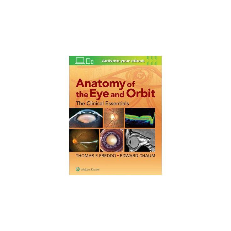 Anatomy of the Eye and Orbit : The Clinical Essentials (Hardcover) (Thomas F. Freddo & Edward Chaum)