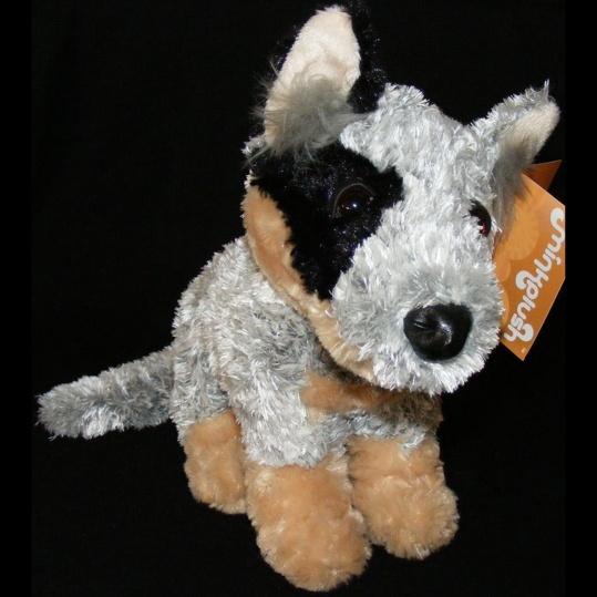 Childrens' Items :: Blue Heeler Cattle Dog - Australian Souvenirs Online